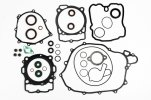 Complete gasket kit with oil seals P400270900071