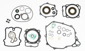 Complete gasket kit with oil seals P400270900081